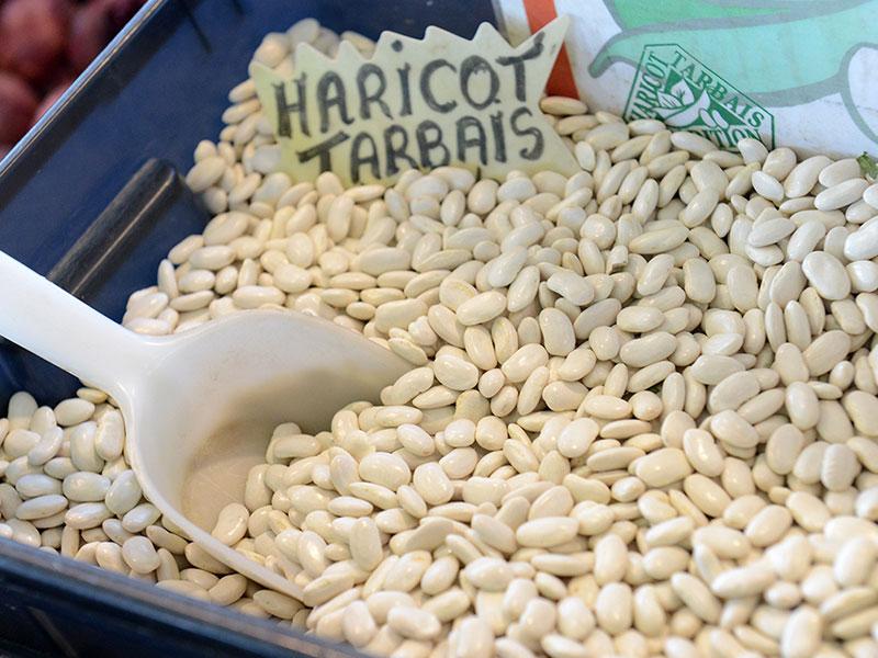 Le haricot tarbais © Service Com Mairie de Tarbes